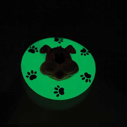 Glow-in-the-Dark Dog Disc