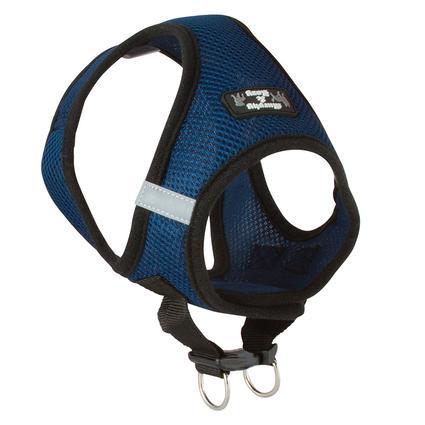 Large Blue Harness