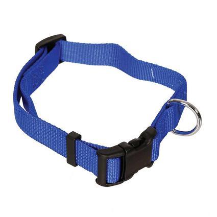 Pet Stuff Pet Collar, Medium, Blue