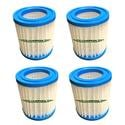 Vanish Spa Filter Cartridges, 4-Pack