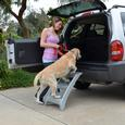 Booster Bath Steps for Elevated and Portable Dog Bath