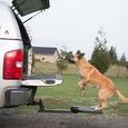 Twistep PetStep for Trucks